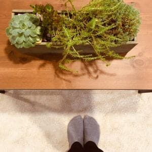 Maceta con plantas